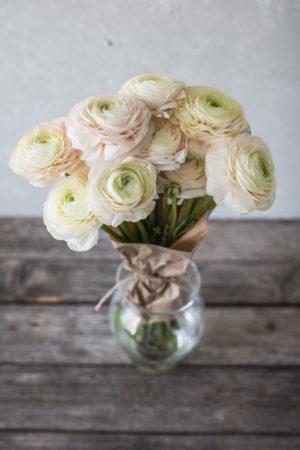 Rezano-cvetje-Ranuncula