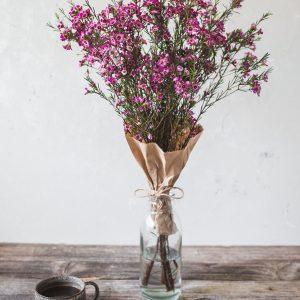 rezano-cvetje-VAX