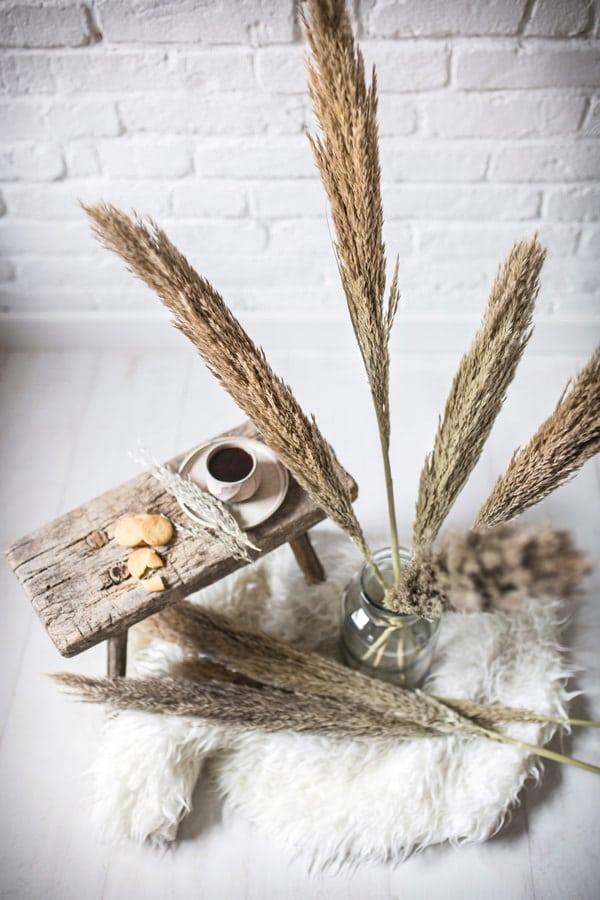 posusena-dekorativna-trava