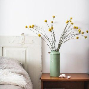 suho-cvetje-Kraspedja