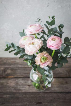 Sopek-roz-Nov-dan-novo-veselje