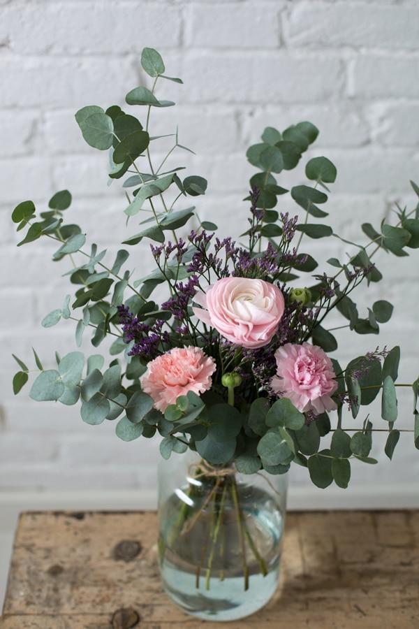 sopki-roz