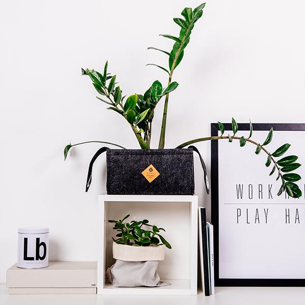 Equa Home-Swing Black-office