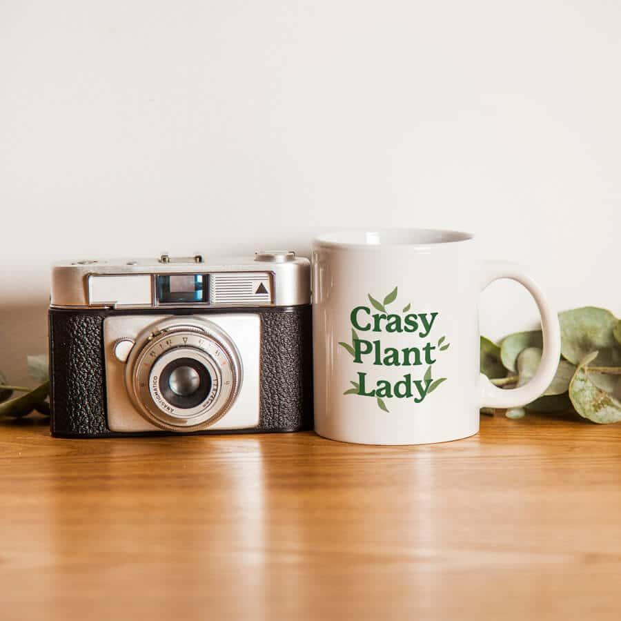skodelica-crasy-plant-lay-zelena
