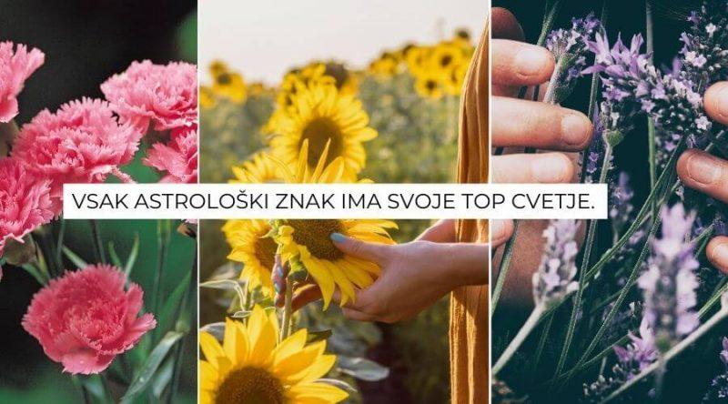 astroloski-znaki-roze