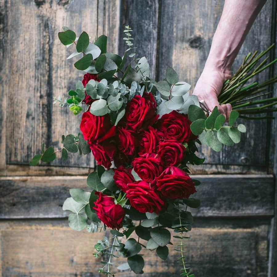 sopek-vrtnic-valentinovo-2